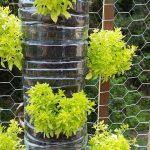 verticale tuin maken